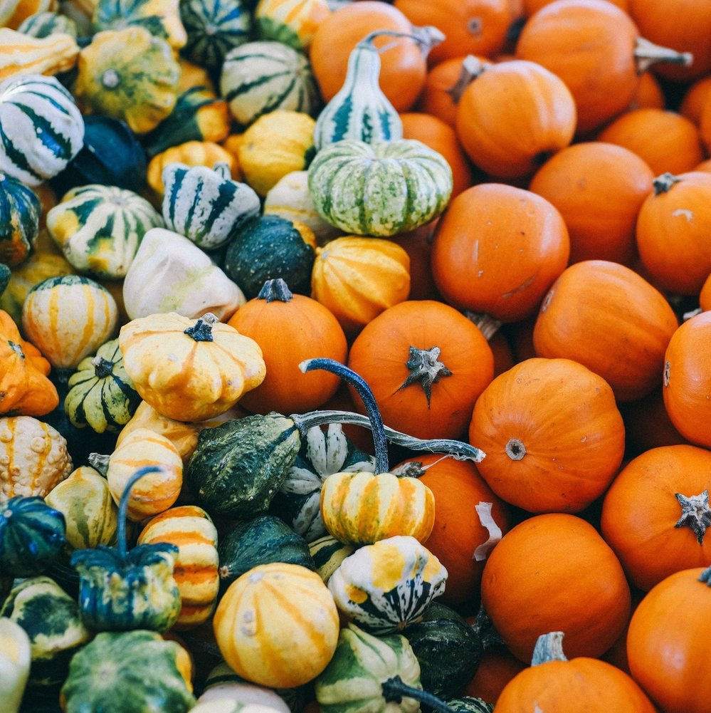 Guide to 10 Winter Squash Varieties